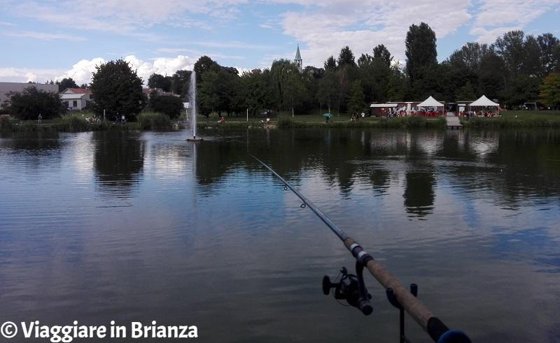 Pescare al laghetto di Giussano