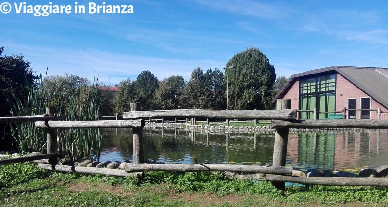 Cosa fare a Seveso, il Bosco delle Querce