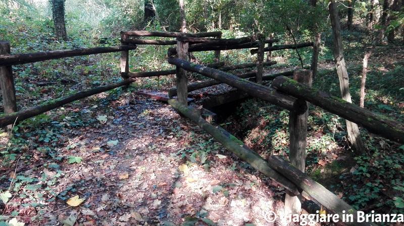 Il ruscello nel Parco di Villa Dho