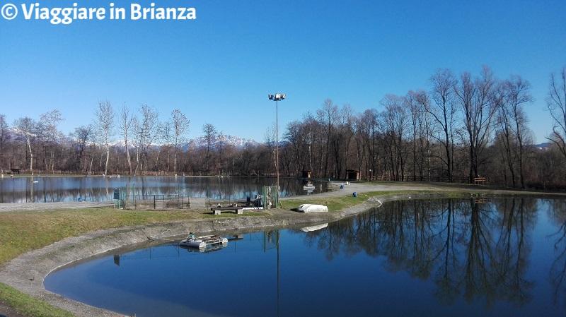 Dove pescare vicino a Milano, i Laghi Verdi di Inverigo