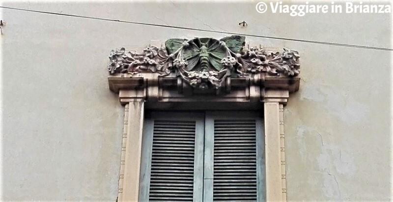 Le farfalle di Casa Paleari a Monza