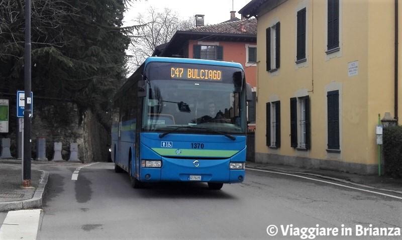 Autobus C47