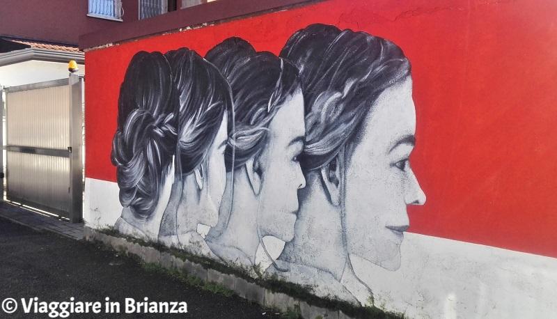 Murales a Milano e dintorni, Paolo Monga a Monza