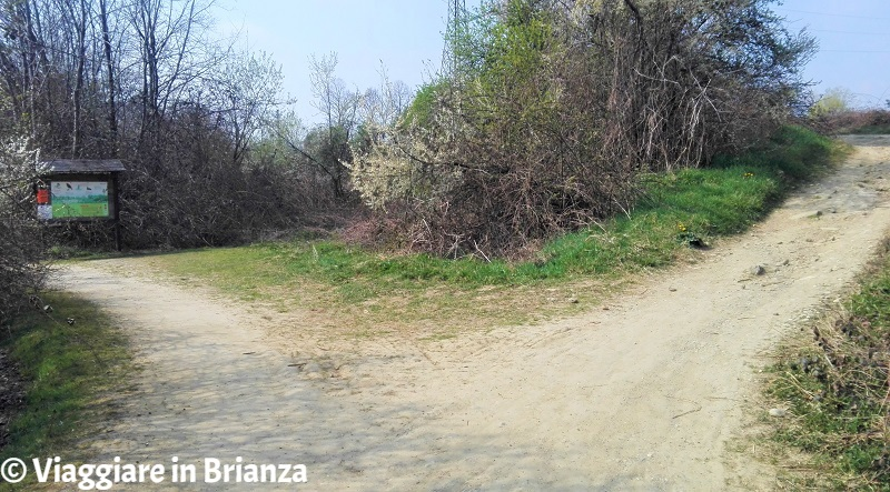 Il bivio della pista ciclabile dell'Oasi Lipu a Cesano Maderno