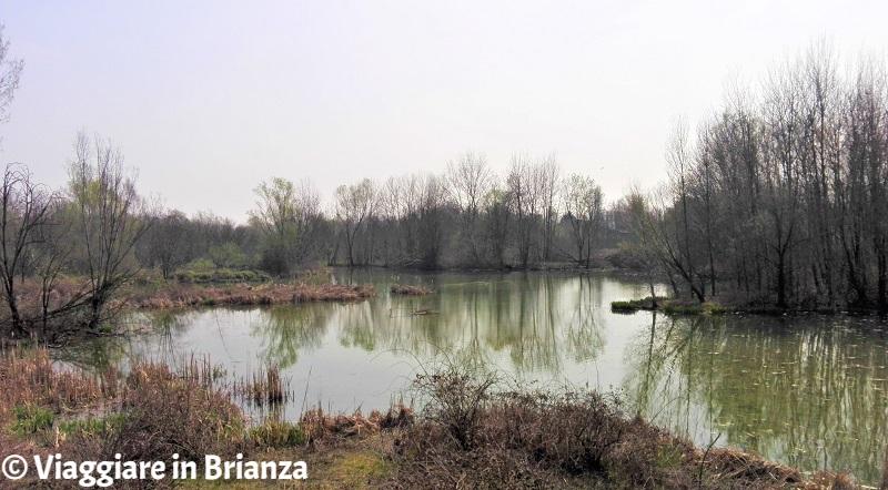 Cesano Maderno, Oasi Lipu: l'area umida