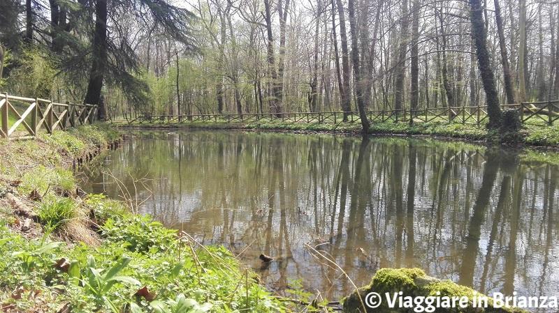 Cosa fare nel Parco di Monza, il Laghetto della Valle dei Sospiri