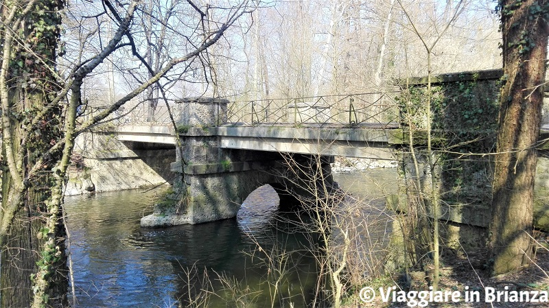 Cosa fare al Parco di Monza, il Ponte dei Bertoli