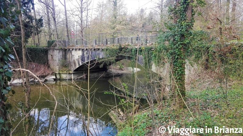 Cosa fare al Parco di Monza, il Ponte della Cavriga