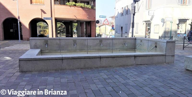 Cosa fare a Villasanta, la Fontana delle Rogge