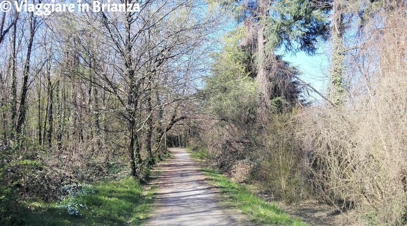 L'inizio del sentiero 22 del Parco delle Groane
