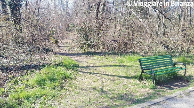 La panchina della pista ciclabile 22 del Parco delle Groane