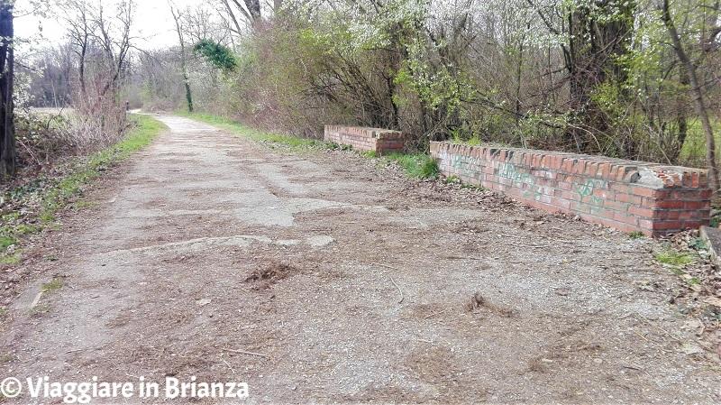 Panchine sul sentiero 28 del Parco delle Groane a Barlassina