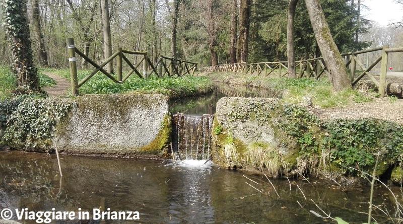 Parco di Monza, la Roggia del Principe e la Roggia Pelucca