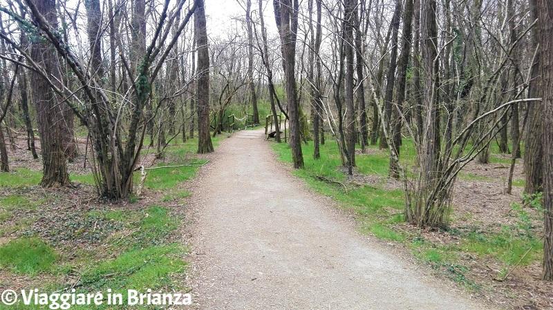 La pista ciclabile 28 del Parco delle Groane