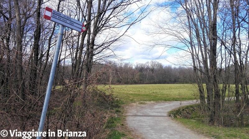 Uno scorcio del sentiero 28 del Parco delle Groane