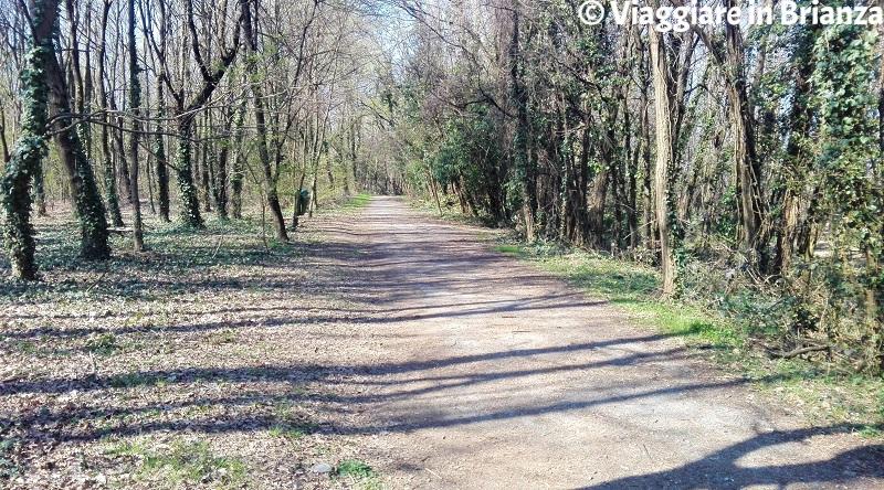 Il sentiero 22 del Parco delle Groane