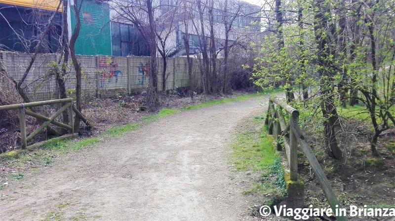 Il sentiero 28 al Parco delle Groane a Barlassina