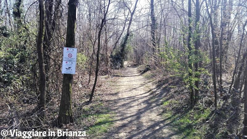Un sentiero pedonale dell'Oasi Lipu di Cesano Maderno