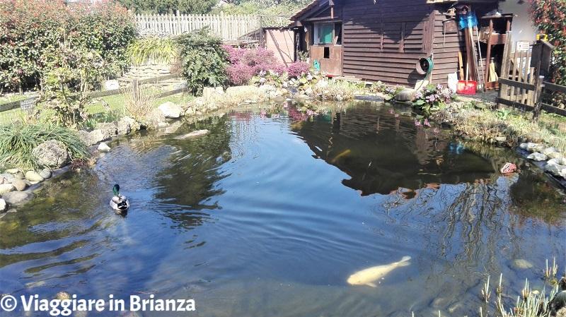 Villasanta, il Parco della Ghiringhella