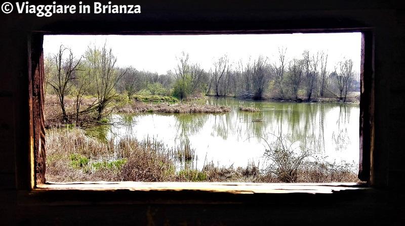 Le aree umide dell'Oasi Lipu di Cesano Maderno