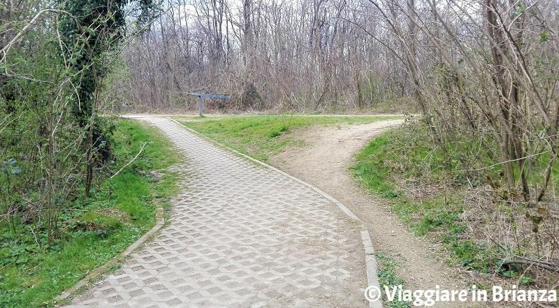 Il bivio della pista ciclabile 27