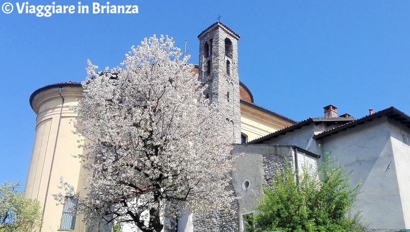 Cosa fare a Cucciago, la Chiesa di San Vincenzo