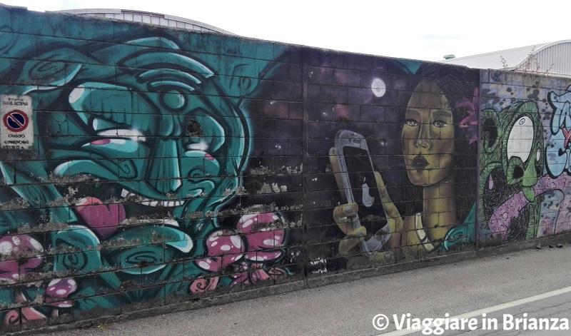 I murales di Barlassina: Nonna Salice e Pocahontas