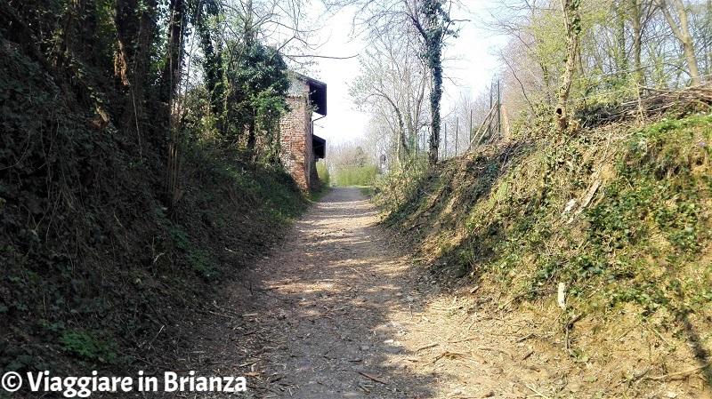 Oasi Lipu a Cesano Maderno, la salita per Cascina Montina