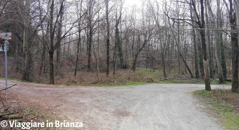 Piste ciclabili nel Parco delle Groane a Seveso