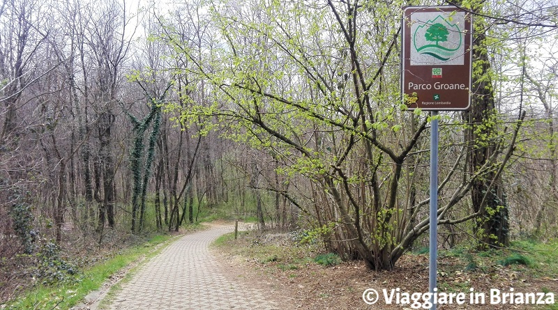 La salita della pista ciclabile 27 del Parco delle Groane