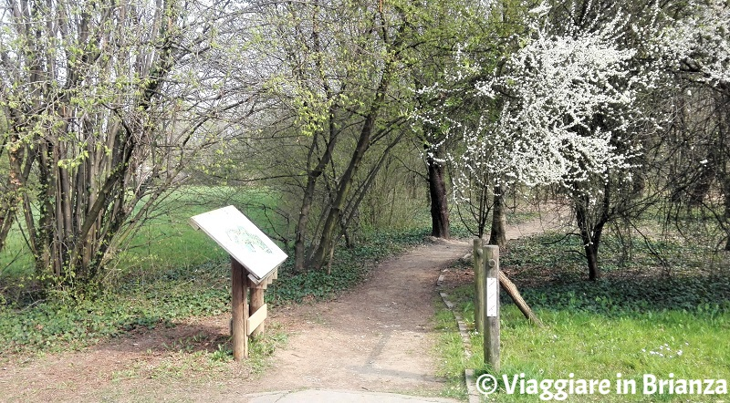Un Sentiero per Tutti all'Oasi Lipu di Cesano