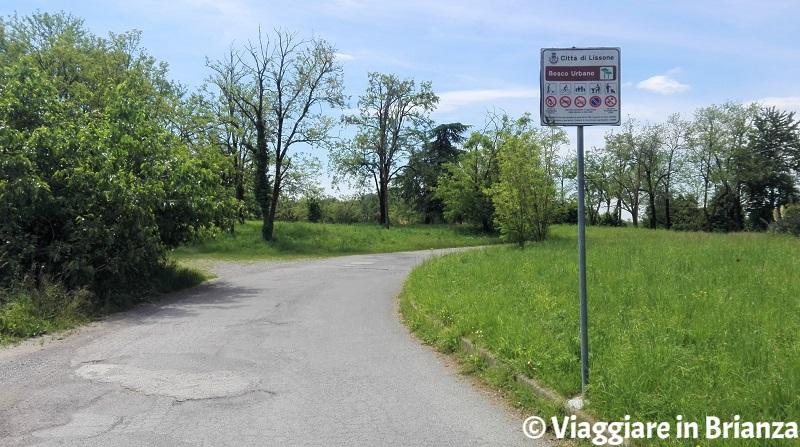 Il Bosco Urbano di Lissone, l'ingresso da via Bottego