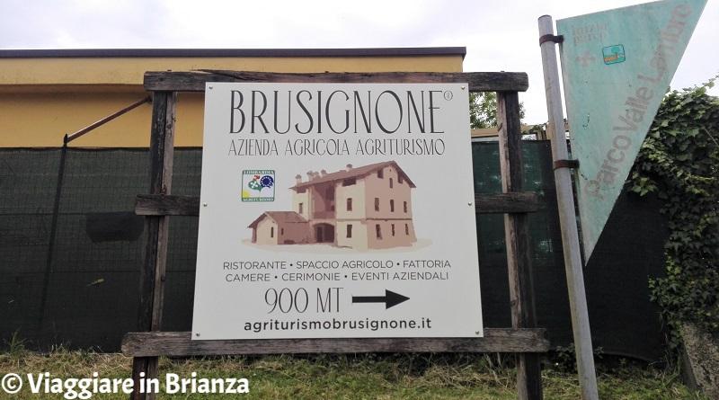 Cosa fare a Besana in Brianza, l'Agriturismo Brusignone