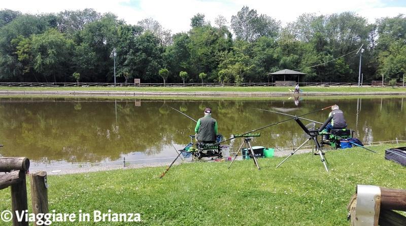 Laghetto di Lissone, pescare
