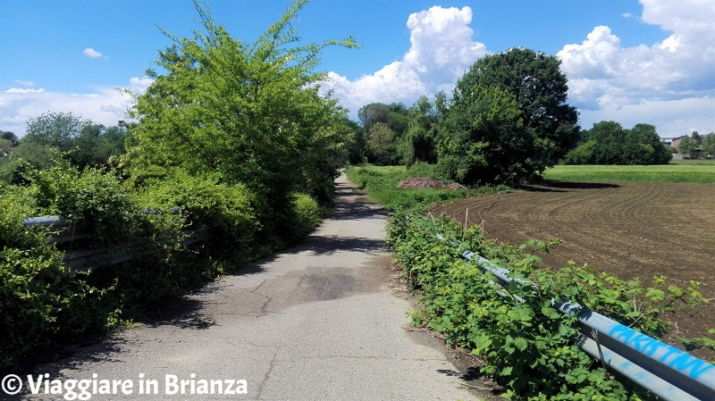 La pista ciclabile del Parco delle Groane a Lentate