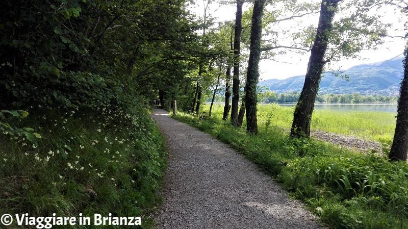 Il sentiero di Casletto sul lago di Pusiano