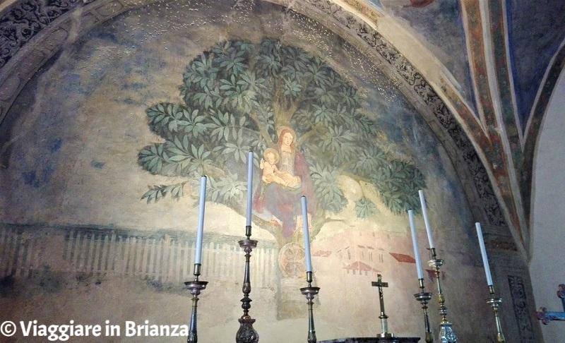 L'affresco del Santuario della Madonna dell'Albero