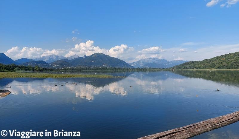 Cosa fare ad Alserio, il lago