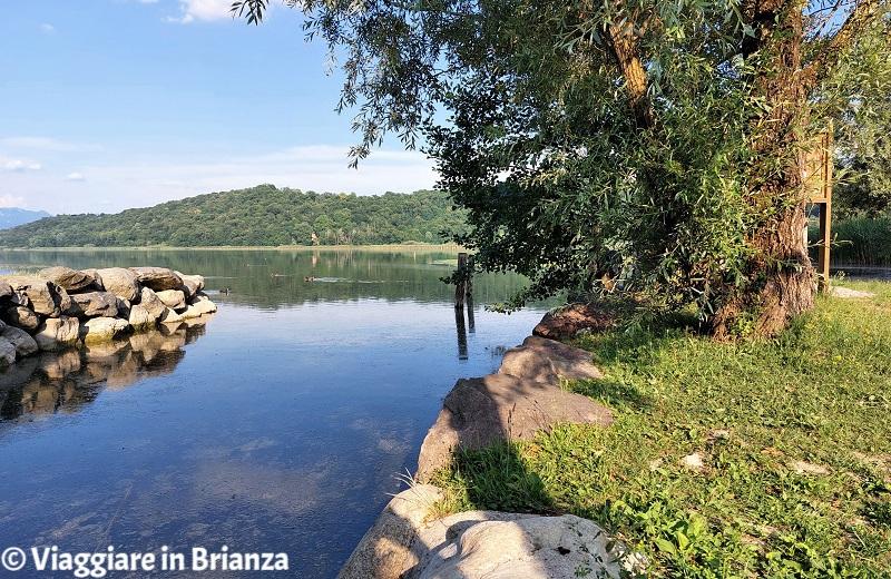 I giardini a lago di Alserio