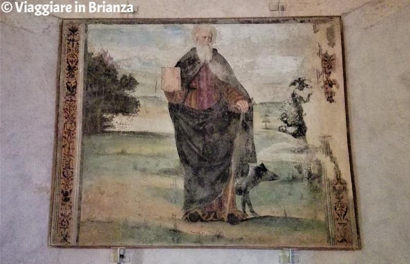 Sant'Antonio Abate nel Santuario della Madonna dell'Albero di Carimate
