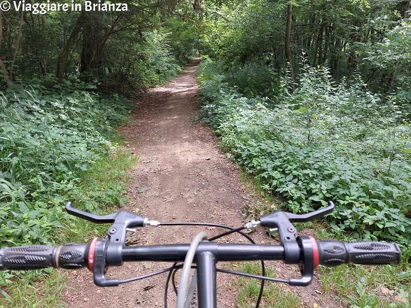 La Valle della Brovada in mountain bike