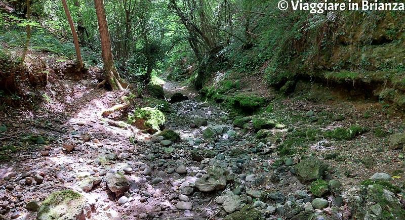 La valle del rio Brovada