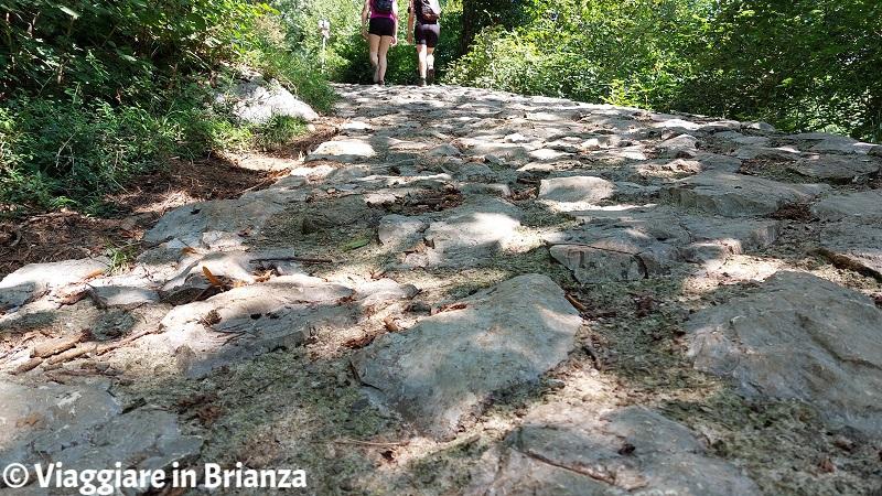 Erba, il Sentiero della Dora