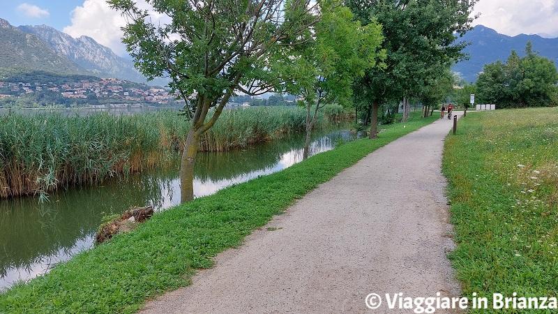 Piste ciclabili in Brianza, il lago di Annone