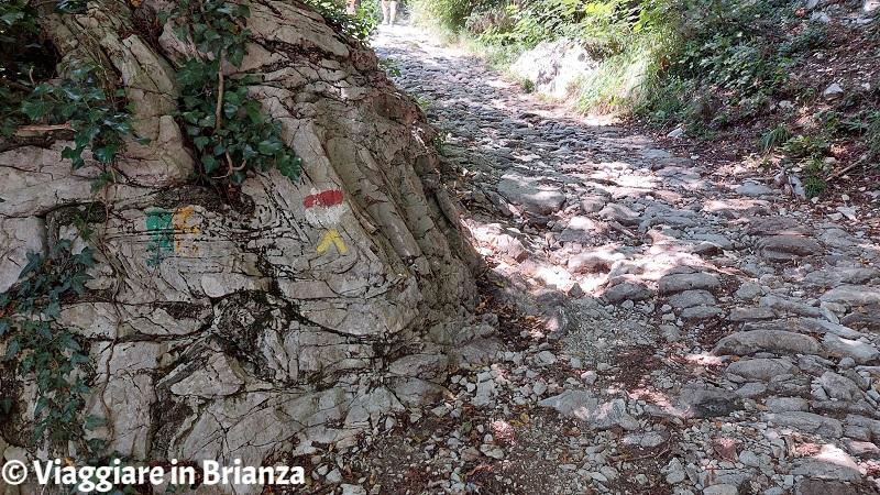 I segnavia del Sentiero della Dora
