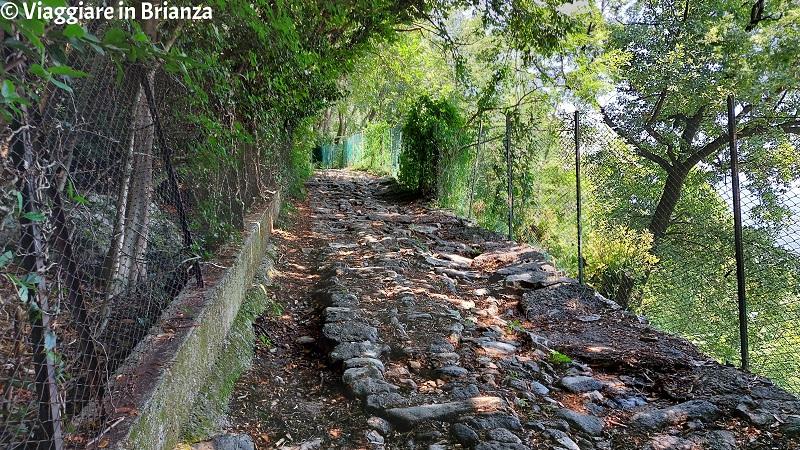 Il sentiero per la Croce Pessina a Erba